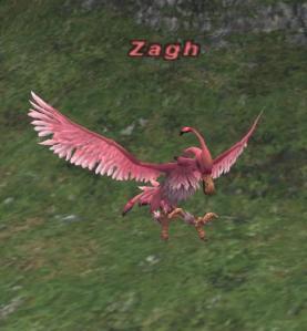 Zagh 1