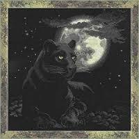 moon Jaguar