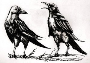 Muninn and Huginn 2